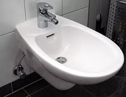 Дополнительное сантехническое устройство в современном виде