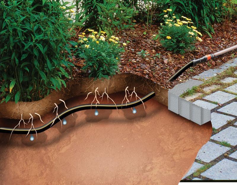 Автополив растений путем увлажнения почвы