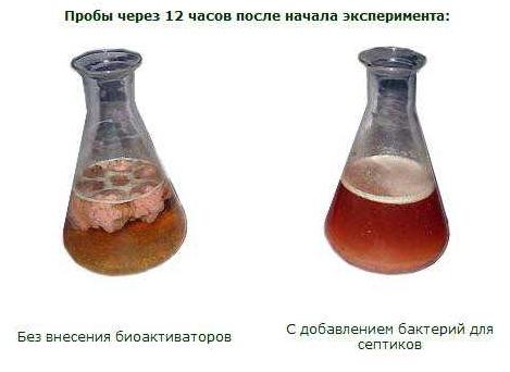 Результаты применения биоактиваторов