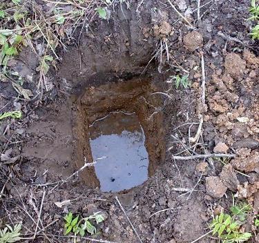 Тип грунта определяют по скорости впитывания воды